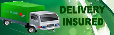 DELIVERI INSURED